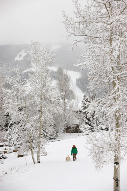 Snow blankets Beaver Creek, Colorado, on Wednesday morning, November 5, 2008. (Photo by Jack Affleck/Vail Resorts)
